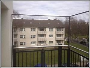 Balkon Trennwand Ohne Bohren : katzennetz balkon befestigen ohne bohren anleitung balkon house und dekor galerie yqajn1eajv ~ Bigdaddyawards.com Haus und Dekorationen