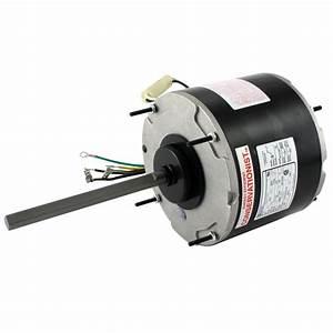 Century Ac Motor Wiring Diagram 115v 2hp Definite Purpose
