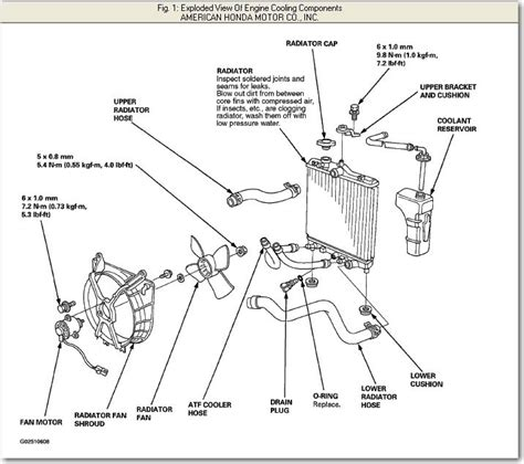 Honda Civic Cooling System Diagram Auto Engine