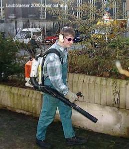 Maulwurf Im Garten Loswerden : maulwurf loswerden 4 forum ~ Frokenaadalensverden.com Haus und Dekorationen