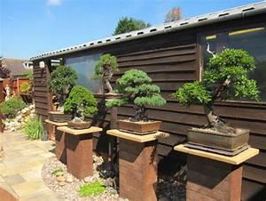 Triyae com = Backyard Bonsai Display ~ Various design