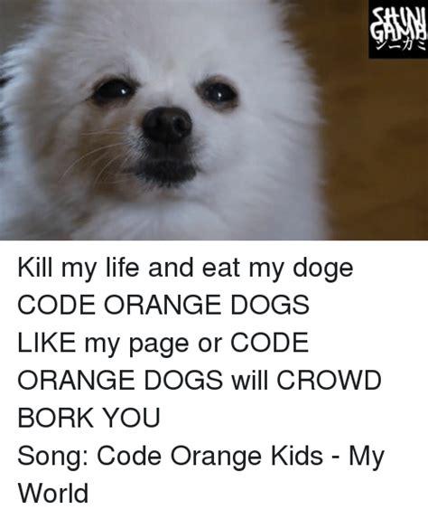 Orange Dog Meme - リ ine kill my life and eat my dogecode orange dogs like my page or code orange dogs will crowd