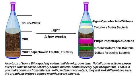 build  column  world wide winogradsky project