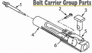 Model 1 Sales  Bolt Carrier Group Parts W  Schematic