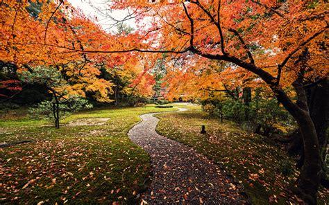 wallpaper autumn leaves yoshikien garden japan