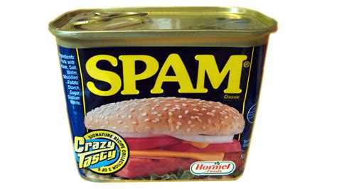 what is spam 7 backstories behind everyday technology terms