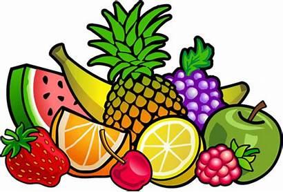 Fruit Frozen Juice Drink Drinks Healthy Fun