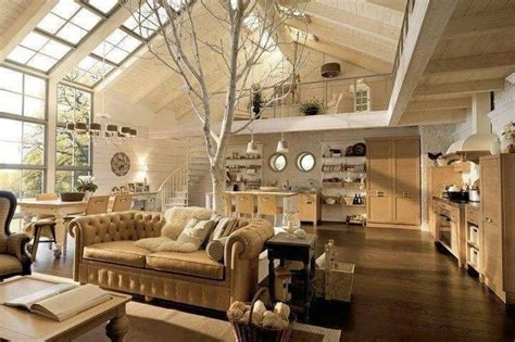 lively living rooms  houseplants great pictures