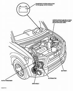 Replace Serpentine Belt Honda Element
