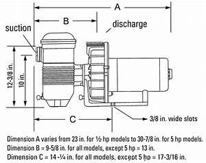 34 Pentair Pool Pump Diagram