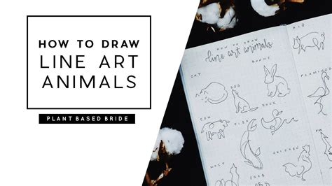 draw  art animals   animal drawing