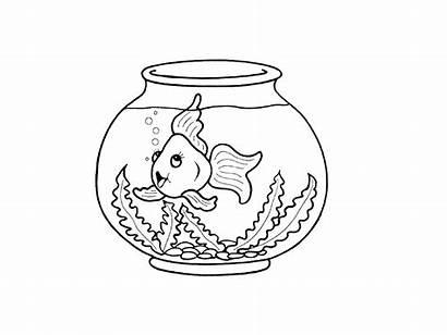 Aquarium Drawing Fish Tank Draw Drawings Artifact