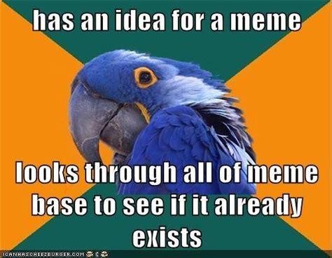 Parrot Meme - image 479588 paranoid parrot know your meme