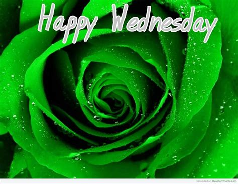 Happy Wednesday Clipart Clipart Best