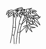 Bamboo Coloring Pages Sheets Template Prek Trees 01kb 457px Nature sketch template