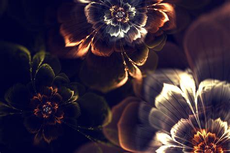 abstract fractal graphics flower wallpaper light hd wallpaper