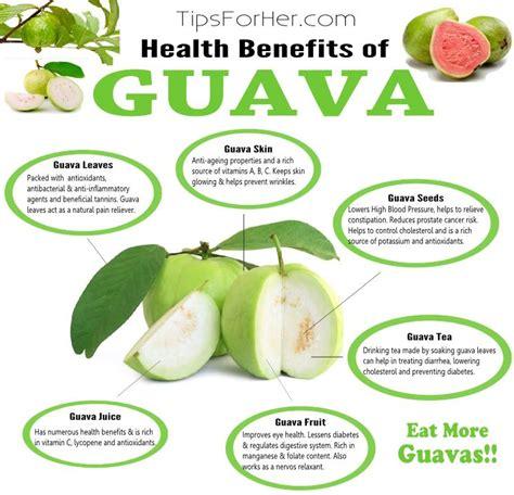 health benefits  guava