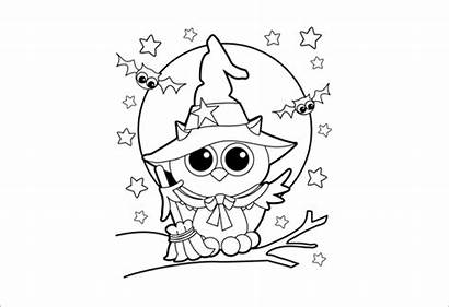 Coloring Halloween Pages Pdf Witch Printable Owl