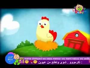 Toyor Al Janah : toyor al janah toyor baby dajajati kabira youtube ~ Medecine-chirurgie-esthetiques.com Avis de Voitures