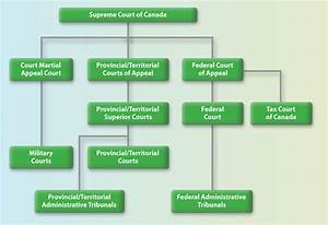 Federal Court Structure Chart The Judicial Structure About Canada 39 S System Of Justice