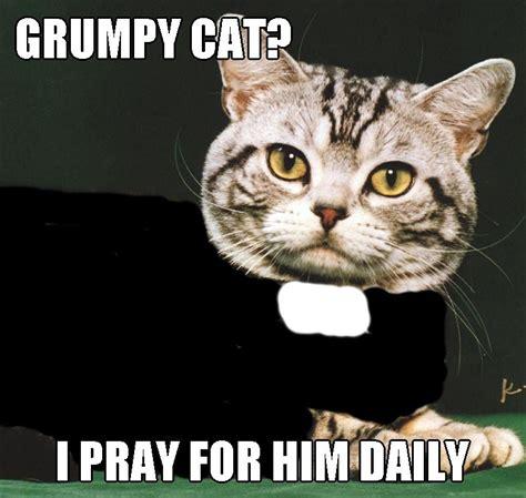 grumpy cat  pray   daily