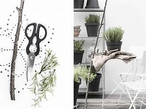 Winterpflanzen Für Balkonkästen : kr uter und pflanzen berwintern gewusst wie sch n bei dir by depot ~ Indierocktalk.com Haus und Dekorationen