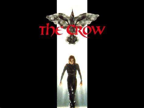 crow wallpaper  wallpaper film