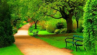 Nature Park Trees Forest Spring Wallpapers Path