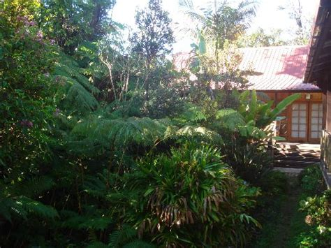 aloha moon cottage inside picture of lotus garden