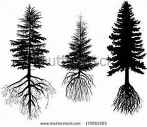 tree roots - Pesquisa do Google | Tattoos | Pinterest ...