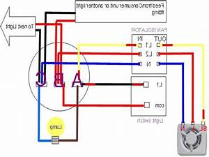 Fan light wiring diagram photo album wire images