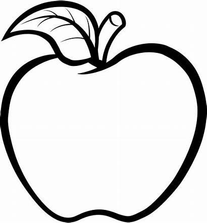 Line Apple Drawing Clipart Outline Transparent Background