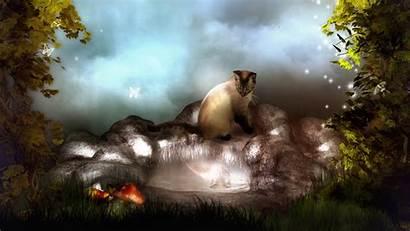 Fantasy Cat Desktop Wallpapers 3d Animal Dreams