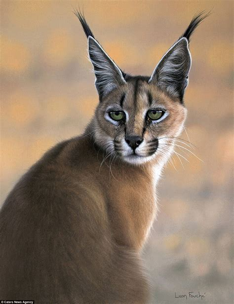Paintings of African Wild Cats