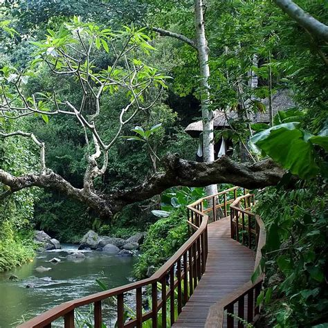 Balis Tropical Paradise Ubud Resort by River View Ubud Resort And Spa Vossy Asia In