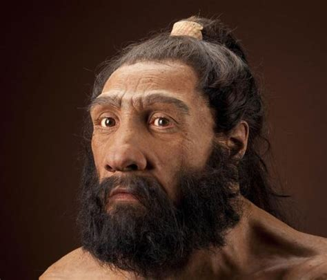 Neanderthals And Denisovans Our Genetic Cousins , Page 1
