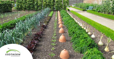 start  veggie garden  south africa isotherm