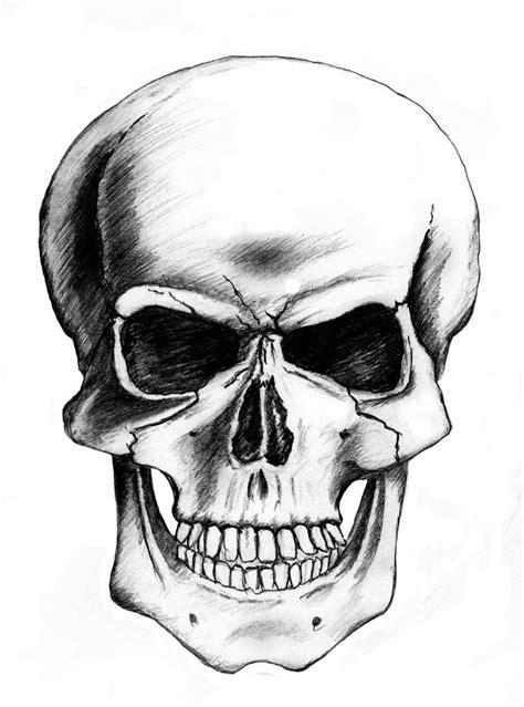 Free Skull Drawing Download Clip Art