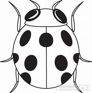 Animals Clipart- ladybug-insects-black-white-outline-984 ...