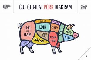 Cut Of Meat Set  Poster Butcher Diagram  Scheme And Guide - Pork  Stock Vector
