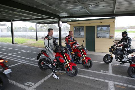 Believe The Hype? Australian Launch – Honda Grom ...