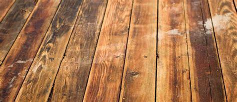 Coit Tower Murals Book by 100 Wood Floor Sanding U0026 Refinishing Red Oak
