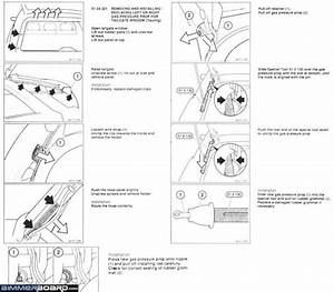 Bmw E61 Tailgate Wiring Diagram  2