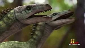 Raptors vs. T-Rex (episode) | Jurassic Fight Club | FANDOM ...