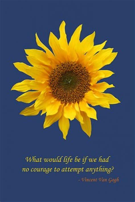 inspirational quotes  sunflowers quotesgram