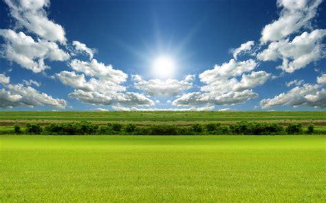 bright day light wallpaper