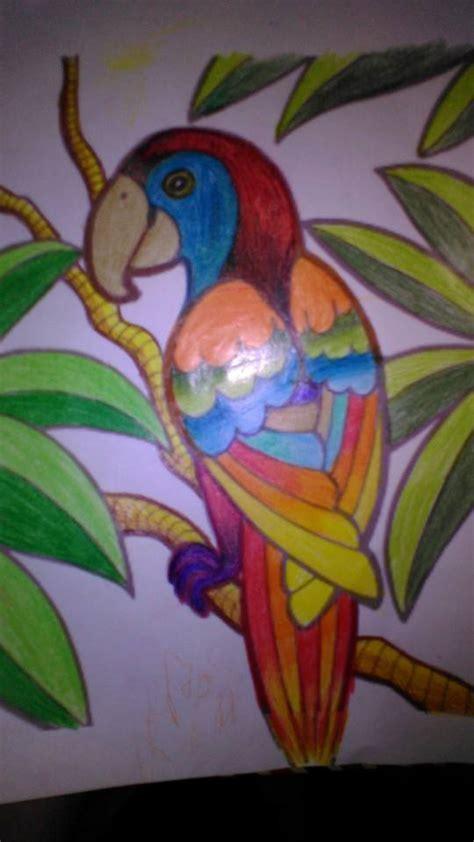 mewarnai gambar dengan pensil warna untuk meningkatkan