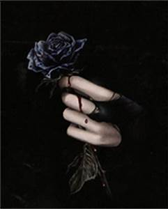 Gothic Gothic purple Rose Black dusty background and ...