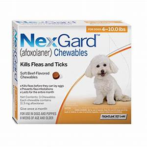 nexgard dogs 4 10 lbs 3 month supply