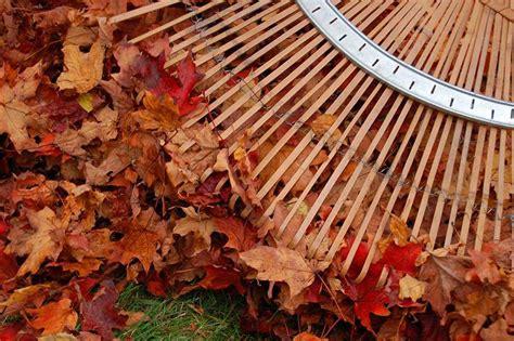 Fräsen Im Herbst by Aktuelles Dirk Schoebel Sch 246 Ne G 228 Rten Und Pl 228 Tze